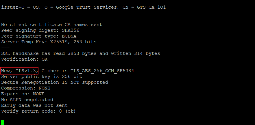 Testing a Server for TLS 1.2/1.3 in Linux