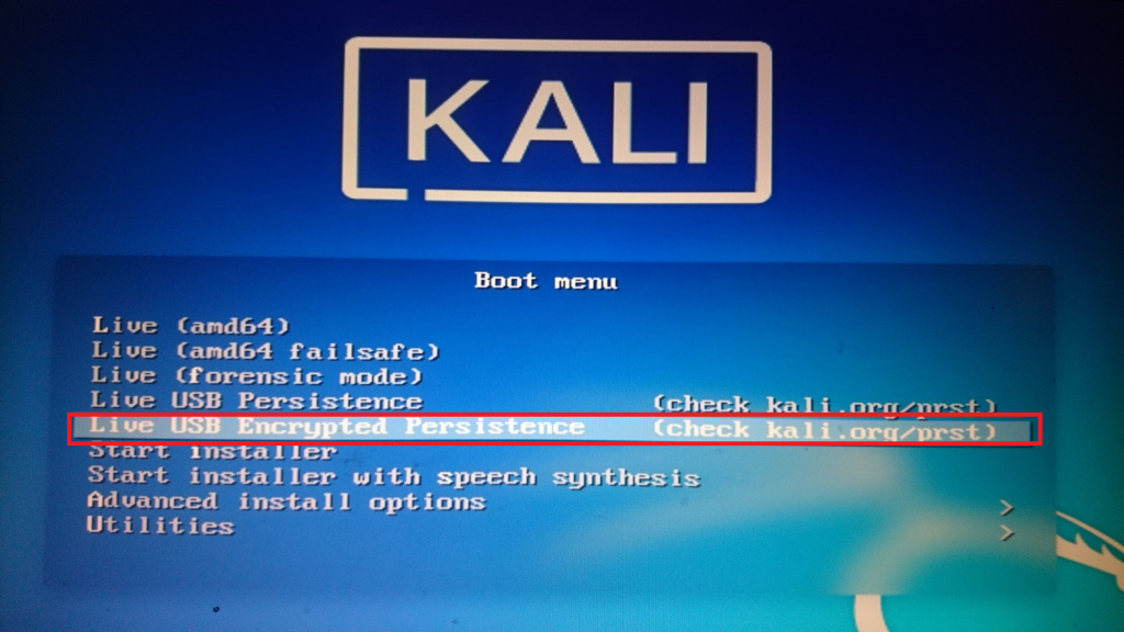 Kali Linux 2021 Live USB with Persistence and Optional Encryption